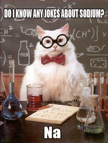 Chemistry Cat Sodium Joke